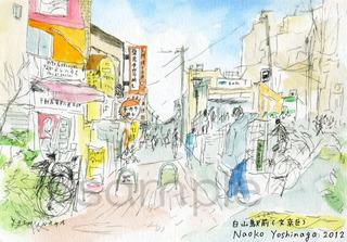 12otora_hakusaneki_sg_s.jpg